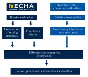 ECHA schema processo di valutazione