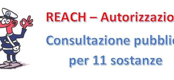 REACH autorizzazione