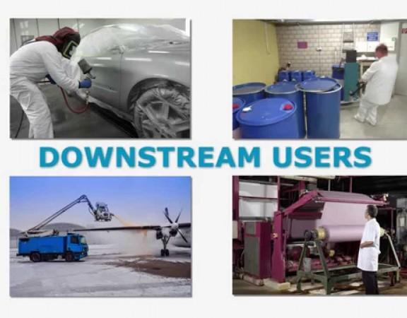 downstream users utilizzatori a valle